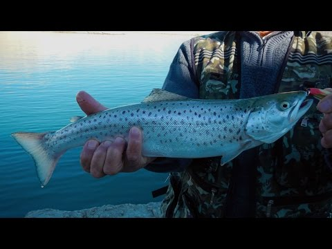 рыбалка ютуб дагестан