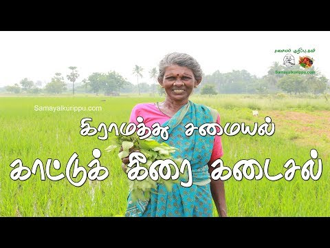 My village food Kaatu keerai Kadayal | கிராமத்து சமையல் காட்டுக் கீரை கடைசல் | Samayal  in Tamil