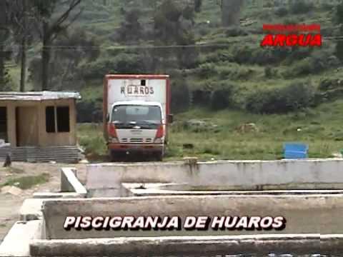 PRINCESITA HELENT - MI HUAROS QUERIDO