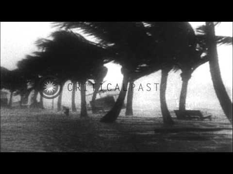 Hurricane scenes and damage in San Juan, Puerto Rico from 1932 San Ciprian hurric...HD Stock Footage