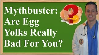 Mythbuster: Are Egg Yolks Really Bad For You?