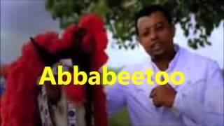 Taddalaa Gammachuu Abbabeetoo