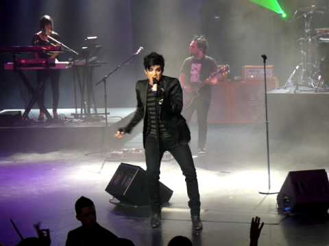 Down the Rabbit Hole Adam Lambert Red Robinson-PARTIAL