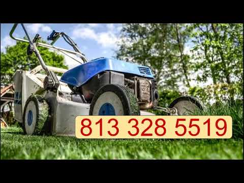 Best Lawn Care Company Gulf City FL - Request Appointment - 813-328-5519