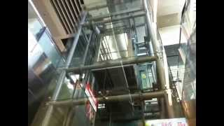 Elevator Design Science with Transparent Wall- Adion Shasha Classroom