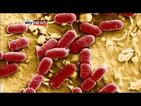 The Post Antibiotic Era Has Begun