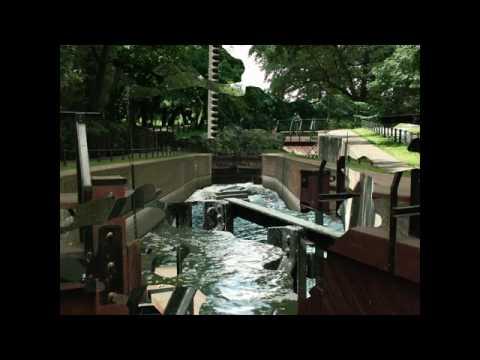 Stary Kanał Bydgoski - Wiosna