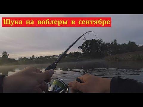 спиннинг для ловли с берега на небольшом