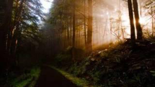 Vídeo 49 de Vertical Horizon