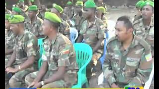 Ethiopian Amharic day news january 20, 2016