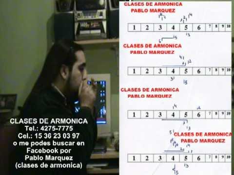 CAMINANDO CON LAS PIEDRAS CLASES DE ARMONICA PABLO MARQUEZ