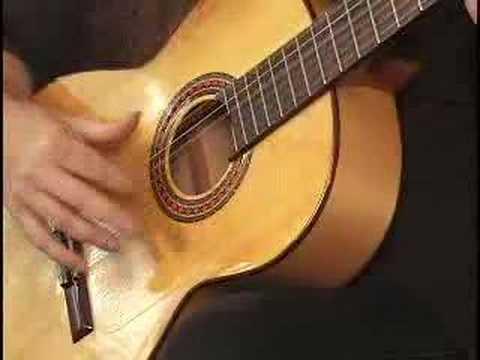 How to Play Flamenco Guitar Made Easy Instructional DVD
