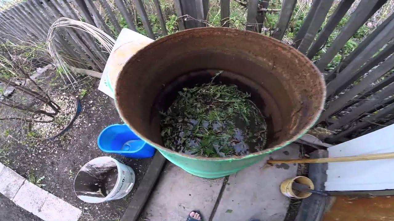 Как сделать жидкое удобрение для огорода из сорняков 5