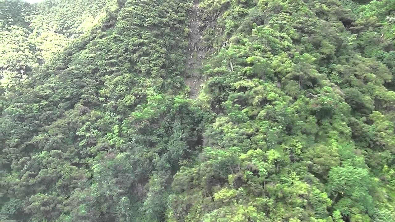 Oahu Tours For Disabled
