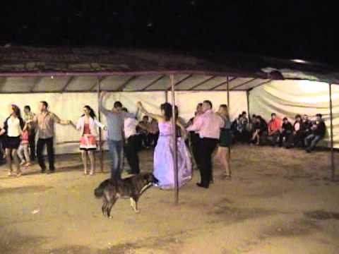 Vreju nunta Sohodol  2011
