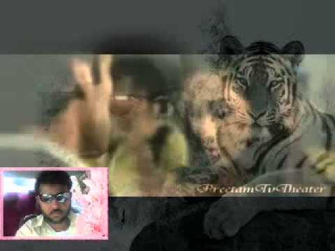 Saibo   Shor In The City Full Video Song Shreya Ghoshal Tochi...