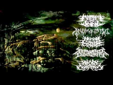 Putrefy The Living - Intestinal Noose