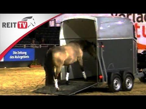 pferd durchfall hausmittel
