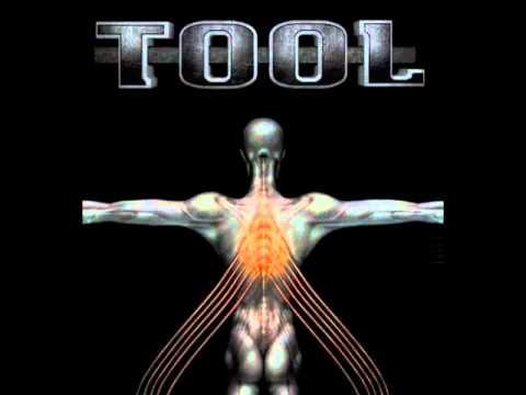 Tool - No Quarter Salival