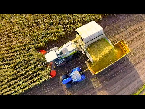 Claas Jaguar 900 Field Shuttle + New Holland T7070 & T7. 210 Blue power Tractoren — De Bruyne