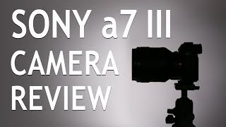 Sony α7 III In-Depth Camera Review