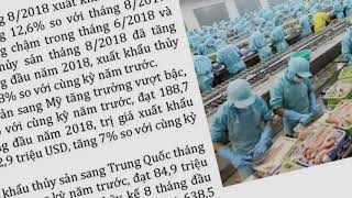 Ban tin tai chinh tuan 2 thang 9