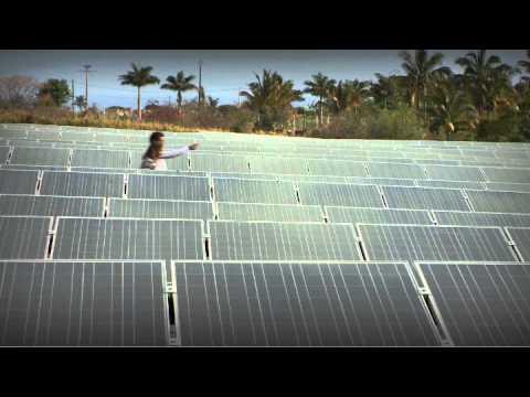 Steve Arcelin, Directeur général d'une société de production d'énergie renouvelable