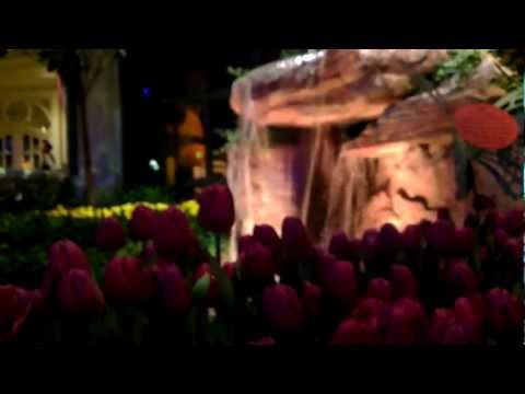 Bellagio resort and casino, Botanical Gardens, Las Vegas, Nevada, United States, North America