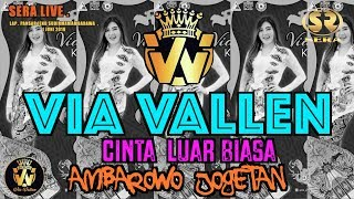 VIA VALLEN - CINTA LUAR BIASA ( LIVE SERA AMBARAWA 1 JUNI 2019 )HD Best Quality #viavallen #vyanity