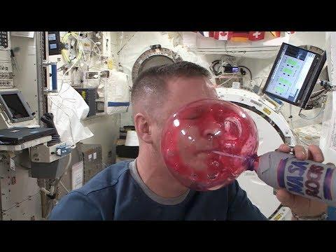 Yuck! Water Sticks to an Astronaut's Face   Video