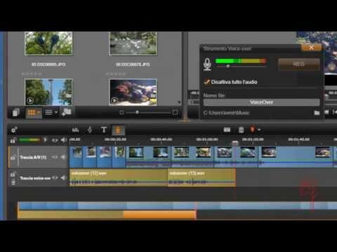 Edit Control (Windows) - msdnmicrosoftcom