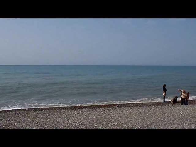 Лазаревское, весеннее море штормит