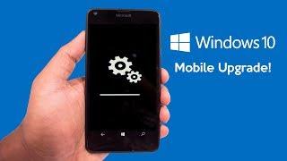 How To Upgrade Any Windows Phone To Windows Phone 10 (New)
