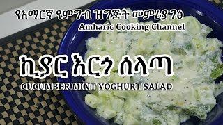 Cucumber Yoghurt Salad - Amharic