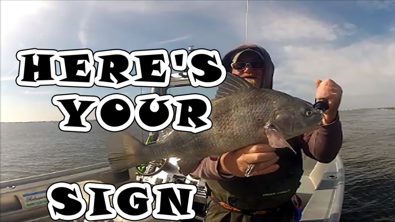 quot HERE S YOUR SIGN quot    JETTYWOLF LIVE  Jacksonville fishing