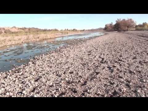 Sequía perjudica a más de 170 mil familias guatemaltecas