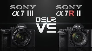 Sony alpha a7 III vs Sony alpha a7R II