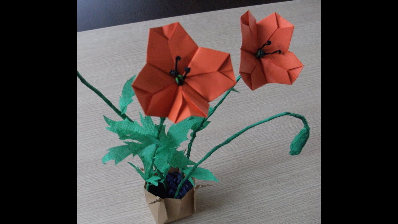 origami poppy 28 images children and creativity
