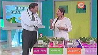 Dr. TV Perú (19-04-2013) - B1 - Tema del día: Hierbas Sanadoras
