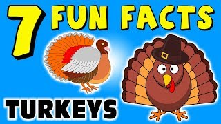 7 FUN FACTS ABOUT TURKEYS! TURKEY FACTS FOR KIDS! Thanksgiving! Learning Colors! Funny! Sock Puppet!