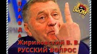 Жириновский: русский вопрос, Болотная, экономика, транспортный вопрос, оффшоры, амнистия, бизнес