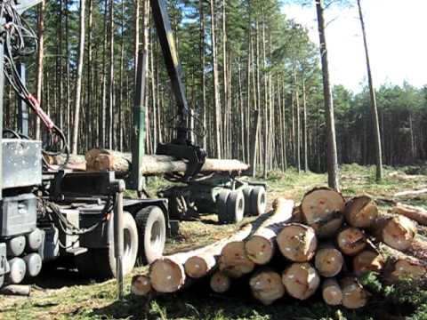 wywóz drewna tartacznego WO