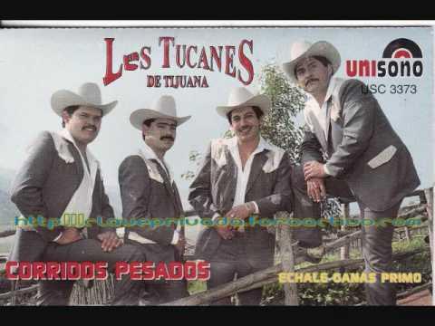 Los Tucanes De Tijuana - El Corrido Del Chichi video