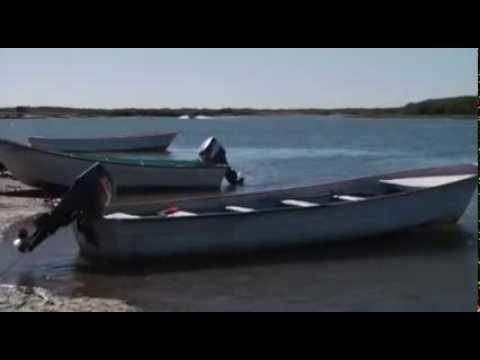 Puerto Chale, el 5º santuario ballenero de BCS y el único en La Paz