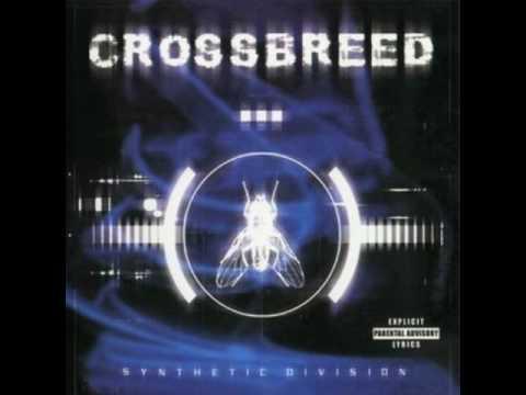 Imagem da capa da música Stem de Crossbreed
