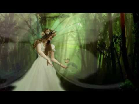 Magical Fairy in The Enchanted Forest. Animation.