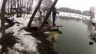 Денежниково spinning trout 2012.avi