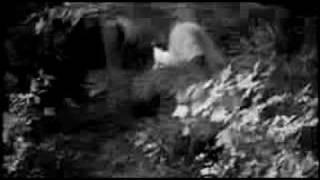 Watch Zombina  The Skeletones Zombie Hop video