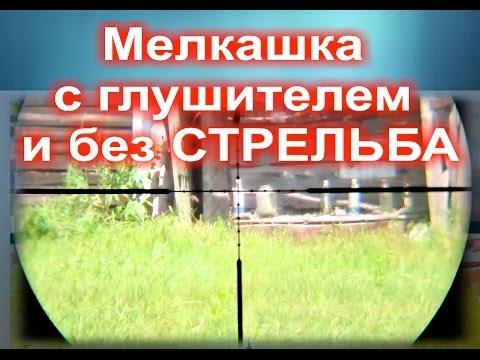 Мелкашка стрельба с глушителем и без тест Small-caliber rifle shooting with silencer от пистолета
