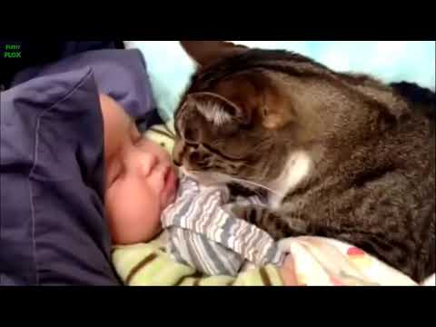 Best Babies and Animals Compilation 2013 [HD]